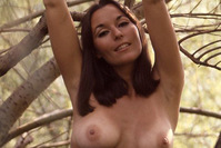 Sally Sheffield playboy