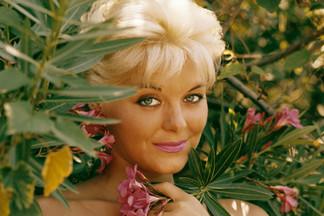 Donna Lynn playboy