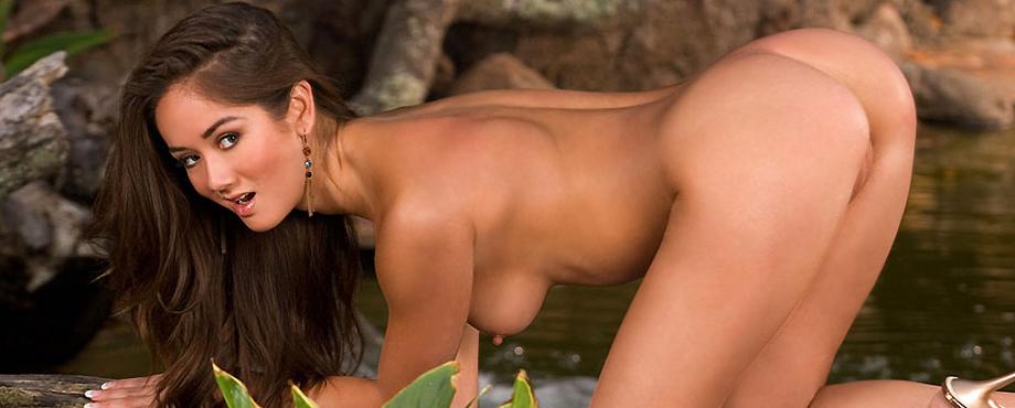 Lisa LeFebre