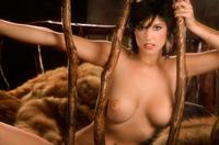 Liz Stewart playboy