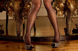 Sandra Michelle playboy
