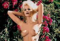 Paulina Kwasniak playboy